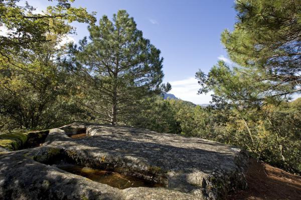 Tombes d'Albarca.
