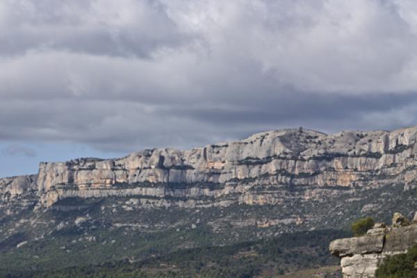 Panoràmica la Siuranella i Montsant de fons.