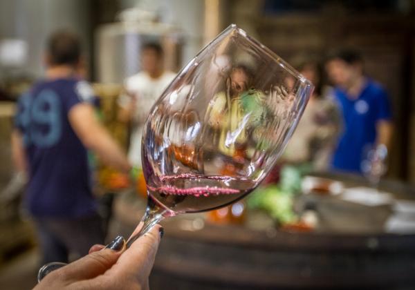 Siurana tours - wine tourism Priorat