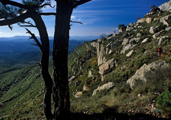 Graus de Montsant, Montsant Parc natural, Rutes Senderisme